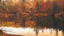 dům na hrázi, ekologická architektura, dřevo