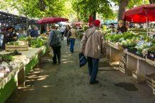 farmářské try, trhy, zelenina